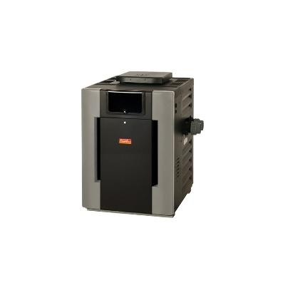 Raypak 206,000 BTU Digital Natural Gas Heater (Mfr Part PR206AEN)
