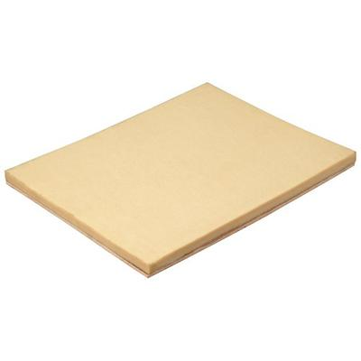 Prostik D3003 15-Inch by 20-Inch Cleaning Pad